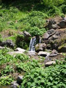 Río de los Berros