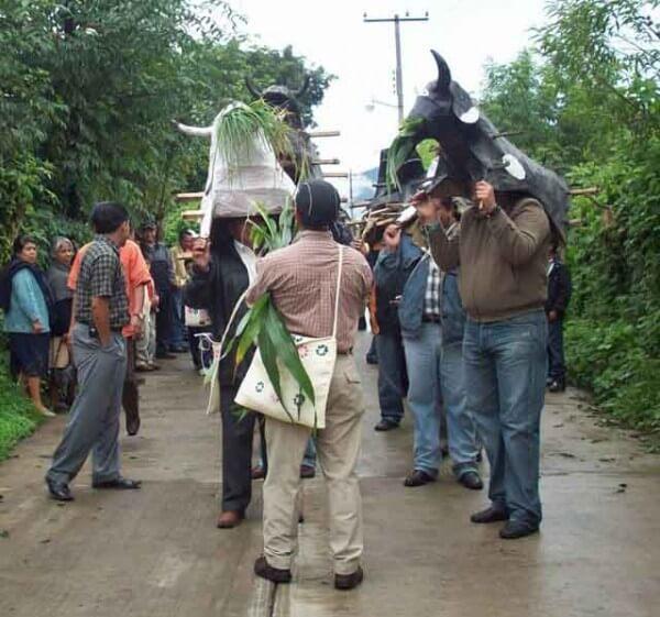 Recorrido de los toritos Yaonáhuac 2008