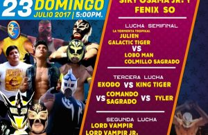 Cartel de Lucha Libre 2017